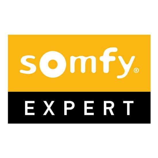 Logo_Somfy_Expert_Pantone